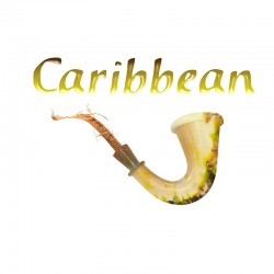 SIGNATURE CARIBBEAN 10 ML